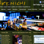Kenichi Website Design